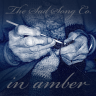 the_sad_song_co-in_amber-album-2016-artwork